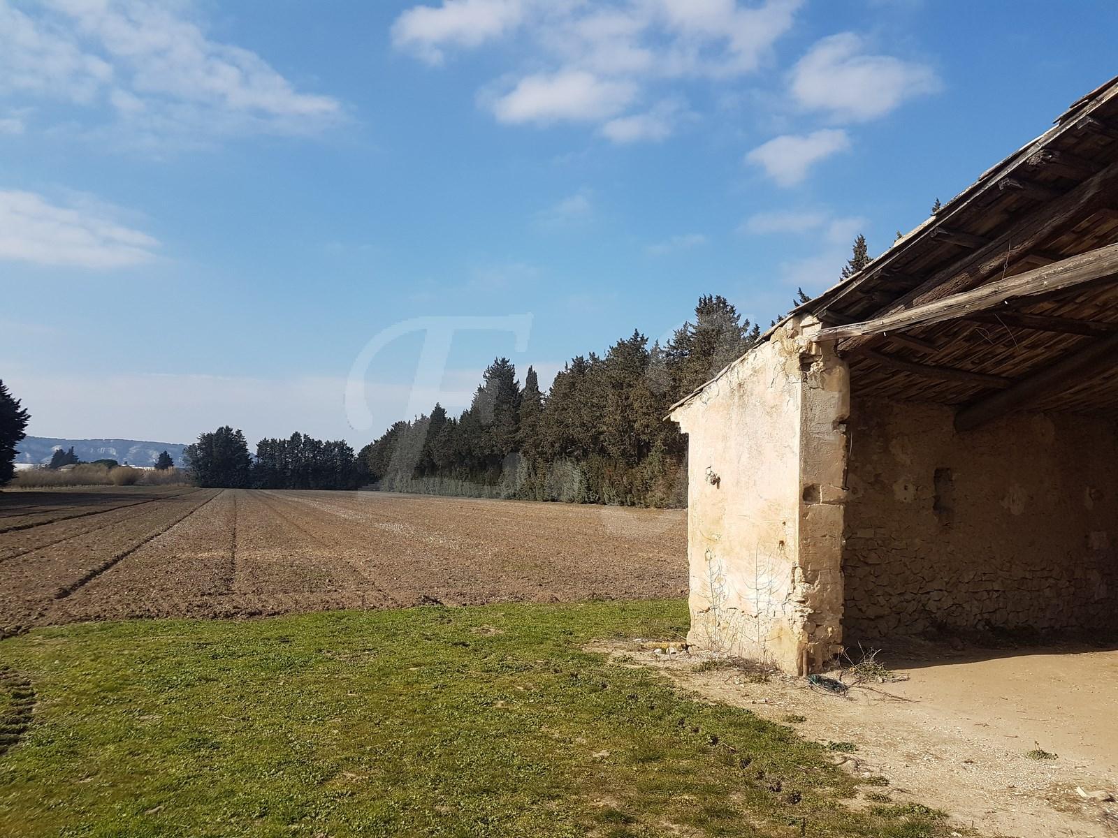 A vendre mas a renover au pied du Luberon