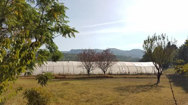 Vente MAS T11 Taillades mas provencal en campagne avec vue luberon et possibilité gîte ou chambre d'hôte